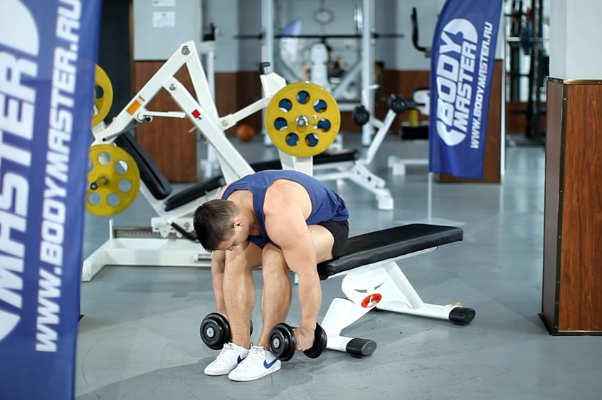 Exercise Seated Bent-Over Rear Delt Raise