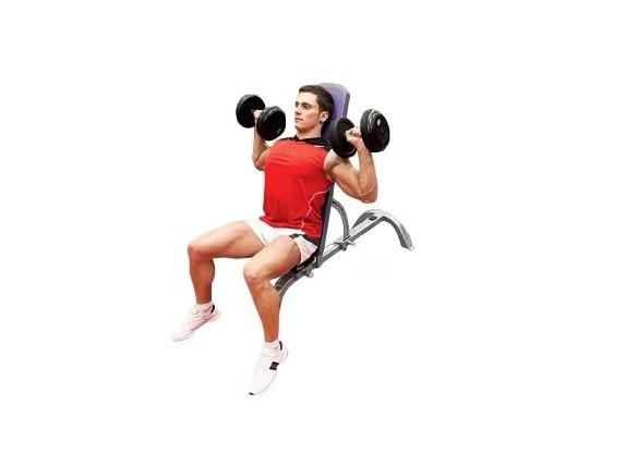 Exercise Dumbbell Shoulder Press