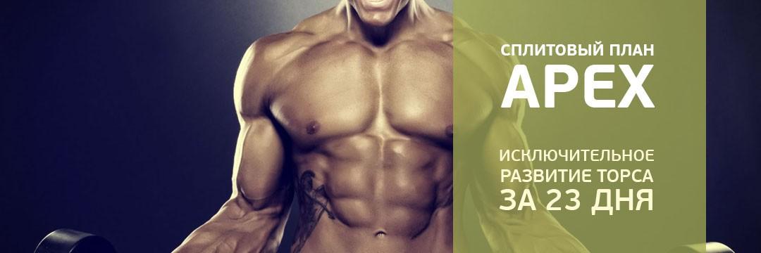Набор мышечной массы » APEX: гипертрофия верхней части тела