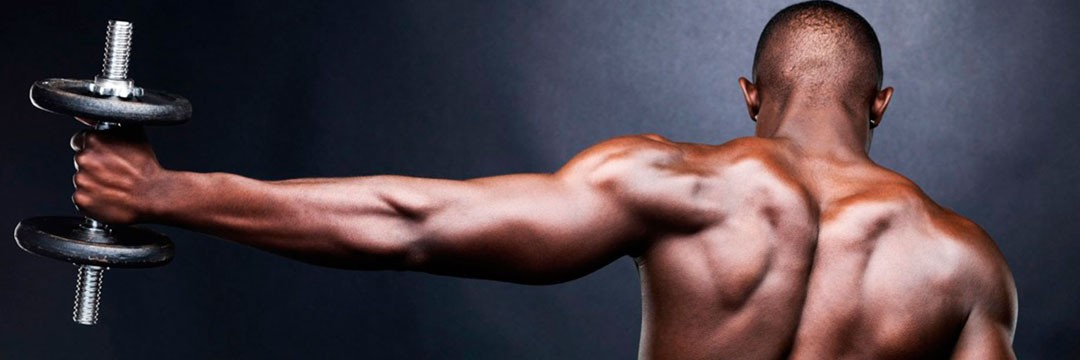 Набор мышечной массы » NEOX: стартовое «фулбоди» для новичка