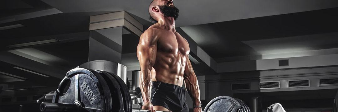 Набор мышечной массы » Программа тренировок для набора мышечной массы