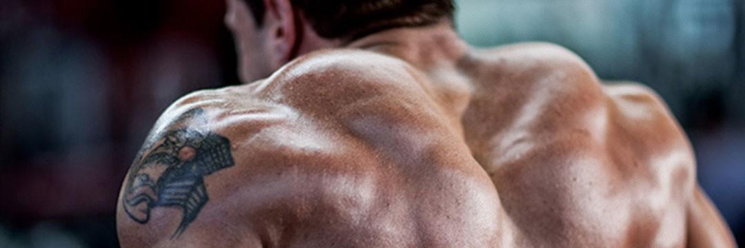 Жиросжигание, похудеть » Программа тренировок на плечи в домашних условиях (штанга + гантели)