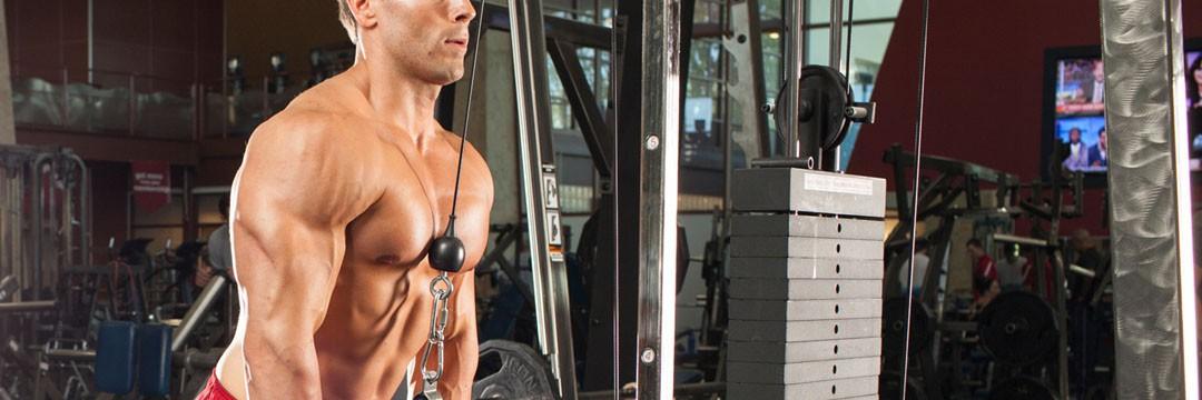 Набор мышечной массы » Программа тренировок на трицепс