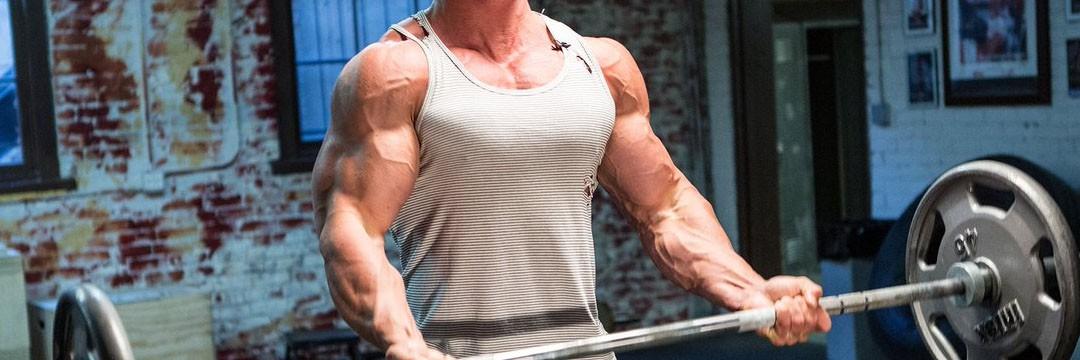 Mass Gain » Muscular:
