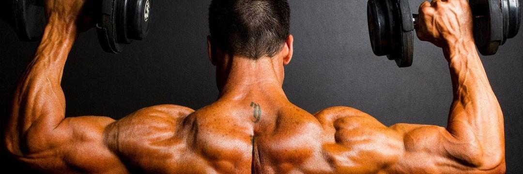 Набор мышечной массы » KOMBIX: программа-специализация на грудь и спину
