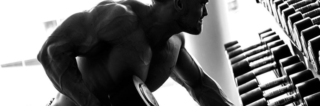 Набор мышечной массы » Программа тренировок после 6 месяцев опыта