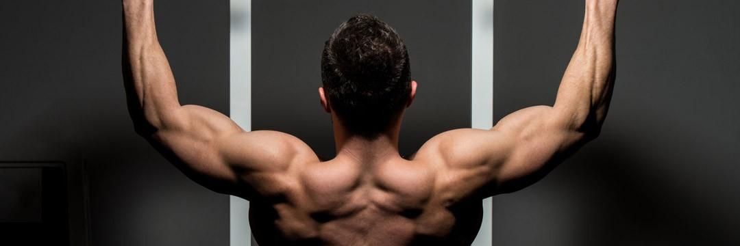 Набор мышечной массы » Комплекс упpажнений для начинающих