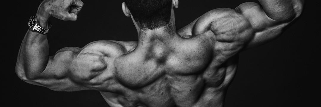 Набор мышечной массы » Программа которая растит мышцы