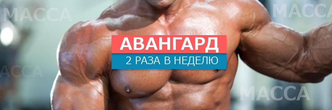 Набор мышечной массы » Авангард