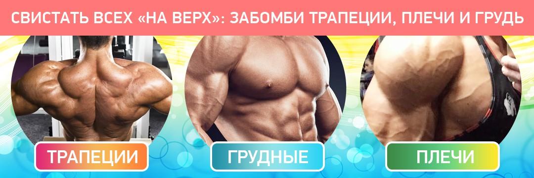 Mass Gain » Shrugs, chest, shoulders