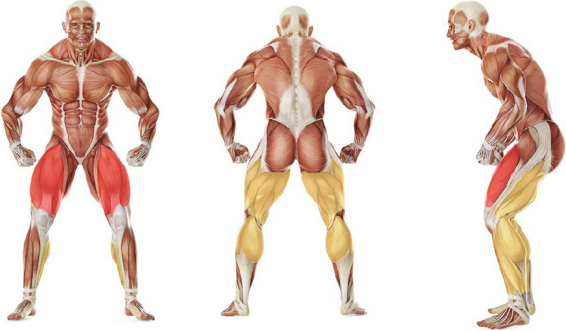 What muscles work in the exercise Rope Jumping